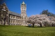 Cơ hội đạt học bổng trường Top 2 New Zealand