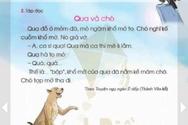 Phản biện Giáo sư Nguyễn Minh Thuyết về sách Tiếng Việt 1 Cánh Diều