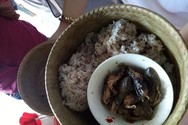Bữa cơm kham khổ của học sinh Tiểu học nơi vùng biên giới Quảng Trị