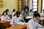 Vắt kiệt sức cho những kỳ thi học sinh giỏi, còn đâu hạnh phúc tuổi thơ?