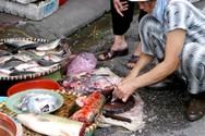 Nhiều nơi có nguy cơ không đảm bảo an toàn vệ sinh thực phẩm