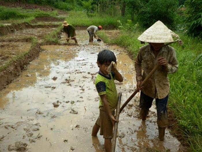 Chùm ảnh: 1001 nỗi khổ của những đứa trẻ ở tuổi đến trường - Giáo dục Việt  Nam