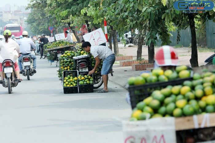 Chùm ảnh: Một đoạn đường tràn ngập cam Trung Quốc giá rẻ ở Hà Nội