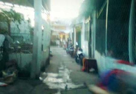 http://a9.vietbao.vn//Uploaded/phuchung/2012_11_26/55502840-1353893108-giet-anh-re.jpg