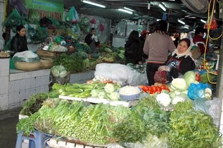 Vào chính vụ, giá rau xanh ở Hà Nội vẫn đắt bất thường